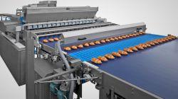Croissant production line