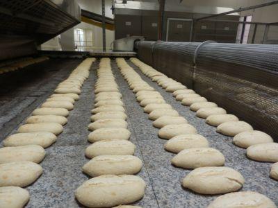 Línea de pan sin bandeja (fermentación sin balancines), cocidas sobre horno de piedra.